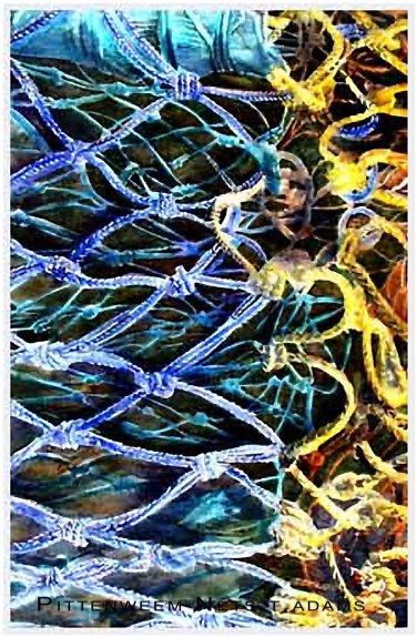 pittenweem nets2